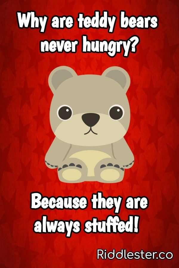 bear jokes