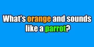 riddle orange