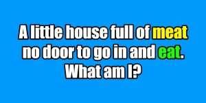 riddle door