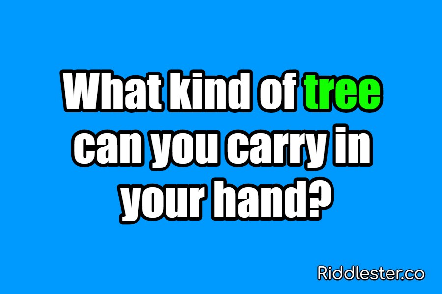 riddle tree