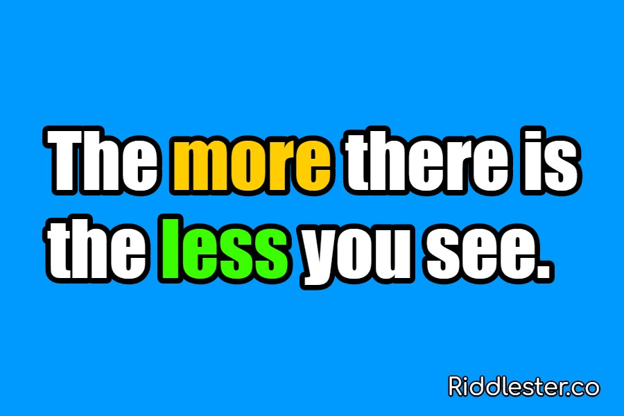 The more there is the less you see Riddle answer