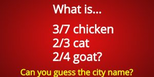 What is 3/7 chicken 2/3 cat 2/4 goat