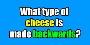 cheese riddle