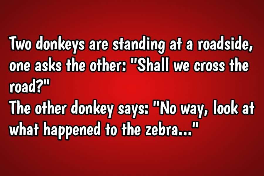 donkey joke