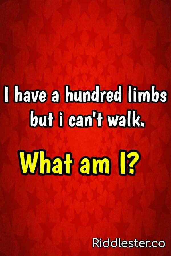 hundred limbs