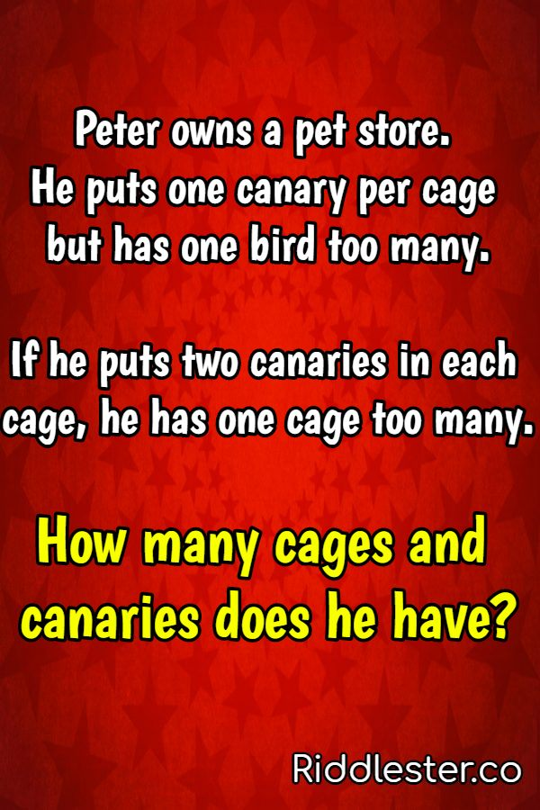 tricky riddles for kids