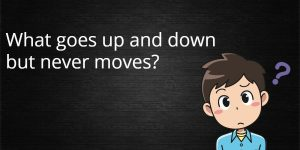 What goes up and down but never moves riddle