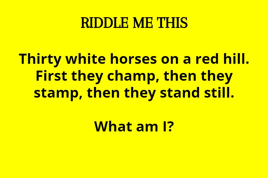 riddles to solve