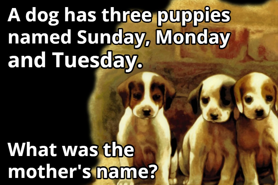 A dog has three puppies riddle answer